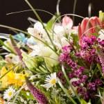 boeket van kleurrijke bloemen — Stockfoto #29471229