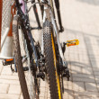 Two bicycles — Stock Photo #29773029