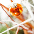 Christmas decoration — Stock Photo #30543561