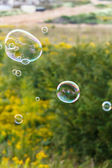 Soap bubble outdoor — 图库照片