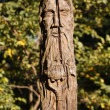Wood idol — Stock Photo