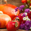 Thanksgiving day concept — Stock Photo #31710135