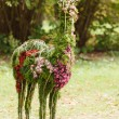 Stock Photo: Flowers lama
