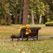 Park miejski w jesieni — Zdjęcie stockowe