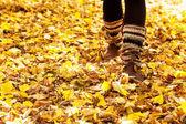 Walking through the autumn leaves — Stock Photo