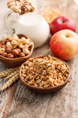 Cereal with nuts — Stock Photo