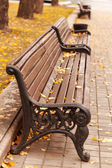 Empty bench in park with leaves — Stock Photo