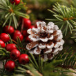 Stock Photo: Christmas decoration with pinecone