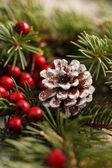 Christmas decoration with pinecone — Stock Photo