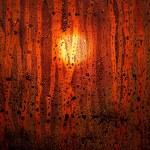 Sunset drops — Stock Photo #34205831