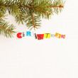 Christmas symbol — Stock Photo #34783473