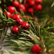 Christmas decoration — Stock Photo #35244705