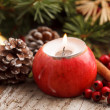 Christmas decoration — Stock Photo #35245205