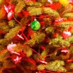 Sapin de Noël — Photo