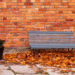 Bench near wall — Stock Photo