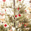 Christmas tree — Stock Photo #35693903