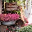 Small flower shop — Stock Photo #35901393
