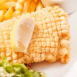 Fish with french fries potatoes — Stock Photo #36041355