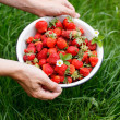 Strawberries in the dish — Foto de Stock