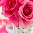 Stock Photo: Pink roses in basket