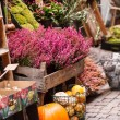 Small flower shop — Stock Photo #37078771