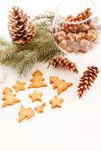 Weihnachtsplätzchen — Stockfoto