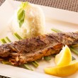 Fish with rice — Stockfoto