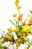 Nice bouquet — Stock Photo