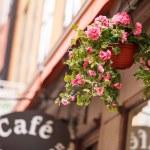 Street cafe — Stock Photo #38264195