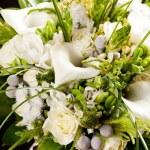 bouquet da sposa — Foto Stock
