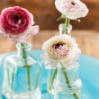 Ranunculus — Stock Photo #39930803