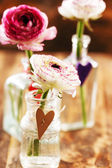 Ranunculus in vase — Foto Stock