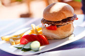 Burger with french fries — Stock Photo