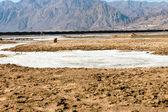 Sól morska — Zdjęcie stockowe