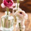 Stock Photo: Ranunculus in vase