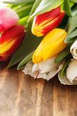 Nice tulips — Stock Photo