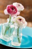 Ranunculus in vase — ストック写真