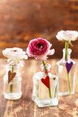 Ranunculus in vases — Stockfoto