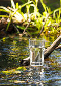Clean water — Stock Photo