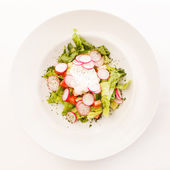 Salad with radish — Stock fotografie
