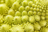 Romanesko broccoli — Stock Photo