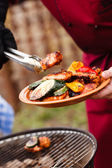 Grilled vegetables and chicken — Stock Photo