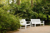 White bench in the park — Foto de Stock