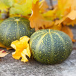Autumn Pumpkin and Leaves — Stock Photo #46538099