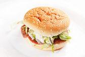 Burger on the white — Stock Photo