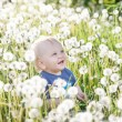 Little baby boy sitting on a green meadow — Stock Photo #46981473