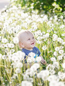 Little baby boy sitting on a green meadow — Stock Photo