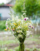 Bouquet of bright wildflowers — Stock Photo