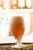 Beer in the bar — Stock Photo