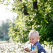 Little baby boy sitting on a green meadow — Stock Photo #47829537